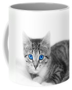 Little Cute Kitten. Space For Your Text Coffee Mug