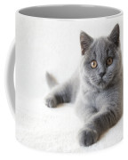 little Friend Coffee Mug