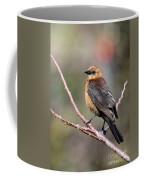 Little Grackle In A Big World Coffee Mug