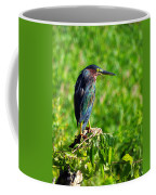 Little Green Heron Coffee Mug