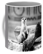 Little Meerkat Coffee Mug