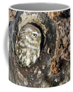 Little Owl 4 Coffee Mug