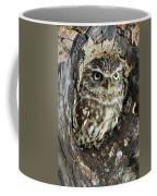 Little Owl 6 Coffee Mug