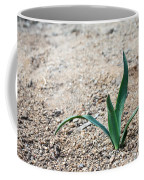 Little Plant Coffee Mug