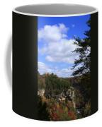 Little River Canyon Alabama Coffee Mug