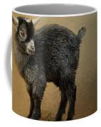 Little Rock Climber Coffee Mug