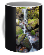 Little Waterfall In Marlay Park Coffee Mug