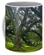 Live Oak Trees Coffee Mug