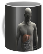 Liver Male Coffee Mug