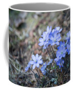 liverleaf II Coffee Mug by Hannes Cmarits