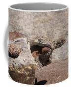 lizard from central Madagascar Coffee Mug