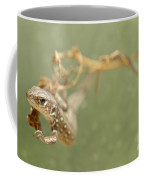 Lizard On The Branch Coffee Mug