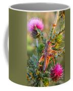 Locust And Thistle 2am-110423 Coffee Mug