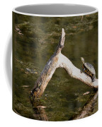 Log Climbing Turtle Coffee Mug