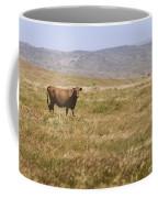 Lone Cow In Grassy Field Coffee Mug