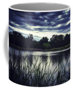 Lone Duck At Dusk Coffee Mug