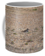 Lone Killdeer Coffee Mug