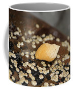 Lone Snail Coffee Mug