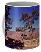 Lone Tree Along The South Rim Coffee Mug