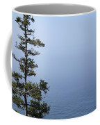 Lone Tree By The Water In Acadia National Park Coffee Mug
