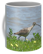 Long Billed Curlew At Palacios Bay Tx Coffee Mug
