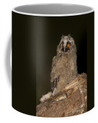 Long-eared Owl Asio Otus Coffee Mug