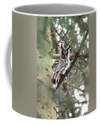 Long Eared Owl At Attention Coffee Mug