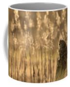 Long-eared Owl Coffee Mug