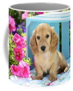 Long Eared Puppy In Front Of Blue Box Coffee Mug