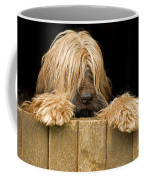 Long-haired Dog Coffee Mug