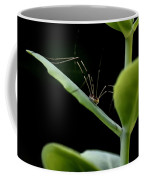 Long Legged Creeper Coffee Mug