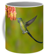 Long-tailed Sylph Coffee Mug