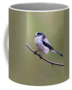 Long Tailed Tit   Coffee Mug