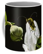 Longhorn Beetle Feeding Coffee Mug