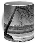 Longs Peak Geese Bw Coffee Mug