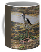 Look Out For That Egret- Mother Stilt Said Coffee Mug