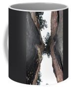 Look Up Between The Trees Coffee Mug