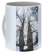 Looking At Tree Tops After A Winter Snow Storm Coffee Mug