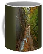 Looking Down Flume Gorge Coffee Mug