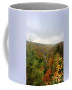 Looking Downstream At Blackwater River Gorge In Fall Coffee Mug by Dan Friend