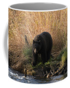 Looking For A Meal Coffee Mug