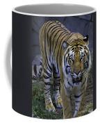 Looking For Lunch Coffee Mug