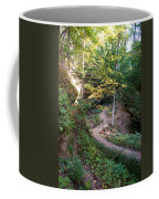 Looking Into Devil's Punch Bowl Wildcat Den Coffee Mug