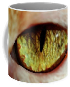 Looking Into The Soul Coffee Mug