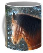 Looking Into The Sun Coffee Mug