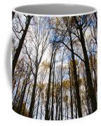 Looking Skyward Into Autumn Trees Coffee Mug