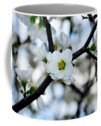 Looking Through The Blossoms Coffee Mug