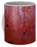 Looking Through The Glass Coffee Mug