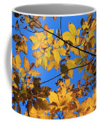 Looking Up To Yellow Leaves Coffee Mug
