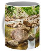 Looking Upstream The Colorado St Vrain River Coffee Mug